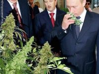 History, Putin smelling weed. #weed#weeds#putin#fattanza#officialfattanza#fattanzainabbondanza#weedhumor#weedmeme#weedmemes#420memes#amsterdam#amsterdamcoffeeshop#iamsterdam#amsterdamcity#losangeles#la#ladispensary#dispensary#dispensarylife via @luxgweed#420Problems,