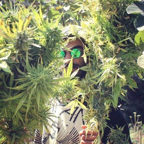 in its time to the #Repost ========================= Via:@hish___man #womeninweed #weedlovers #weedplant #weedspot #weeddelivery #chileweed #weedsmoker #weeditit #weedhumor #weedjokes #weedcommunity #purpleweed #loveweed #weednation #cannabischannel #cannabiscommunity #cannabispics #marijuanaismedicine #cannabislife #marijuanaman #marijuanawomen via @weedcollec#420Problems,