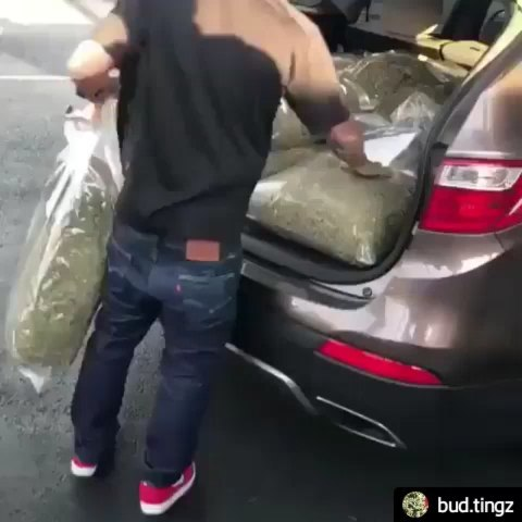 #Repost @bud.tingz • • • • • #420Problems, #weed #cannabis #weedstagram #marijuana #weedporn #cannabiscommunity #ganja #stoner #highsociety #dabs #weedhumor #terps #weednation #smokeweedeveryday #hightimes #highlife #stoned #cannabisculture #joint #cannabis #marijuanagirls #ganjababes #bluntsfordays #bluntsandbongs #weedmemes #fortnite #cheechandchong #ganjababes #pubg #rkelly Great post by @weednana share the love and double tap! via @alienboybudsandmusic