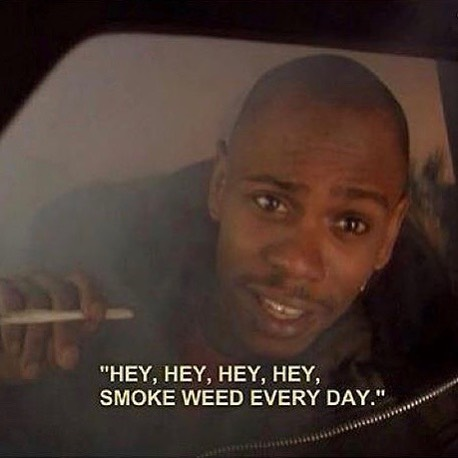 Dave Chappell is one of the funniest cats out there! Did you ever see his show? via @weeddly#420Problems, #420funnies, #420memes, #marijuanafunnies, #420life, #cannabiscommunity, #ganja, #highlife, #maryjane #seshlife, #smokeweed, #smokeweedeveryday, #stonernation, #weeddaily, #weedlife, #weedmeme, #weedmemes, #weedporn, #weedstagram, 420