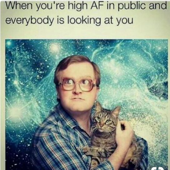 🤣😂😂🤪😂😂🤣 . #smokeweedeveryday #stonerlife #funnyshit #funtimes #fun #stoned #highaf #weedhumor #weedmemes #dankmemes #dank #green #high #weed #420 #girlswhosmoke #hilarious #weedsociety #weedporn #weedquotes #memes #galaxy #cat #highlife #comedy #kush #stoned #stonermemes via @free_thinks_#420Problems, #420funnies, #420memes, #marijuanafunnies, #420life, #cannabiscommunity, #ganja, #highlife, #maryjane #seshlife, #smokeweed, #smokeweedeveryday, #stonernation, #weeddaily, #weedlife, #weedmeme, #weedmemes, #weedporn, #weedstagram, 420