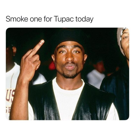 via @blunt.ass.memes#420Problems, #420funnies, #420memes, #marijuanafunnies, #420life, #cannabiscommunity, #ganja, #highlife, #maryjane #seshlife, #smokeweed, #smokeweedeveryday, #stonernation, #weeddaily, #weedlife, #weedmeme, #weedmemes, #weedporn, #weedstagram, 420