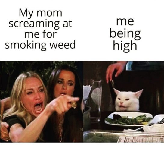 Too funny 🤣🤣🤣 #420life #420meme #420friendly #weedhumor #weedsmokers #cannabisculture #legalizemarijuana #420humor #dankmemes #stonerproblems #weedmeme…