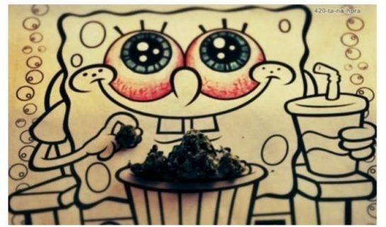 Querido bob esponja 🤩 #autocultivo #aytofloreciente #autoflorecientes #thc #marihuanalegal #cultivandoor #kush #purplekush #legalizenla #faso…