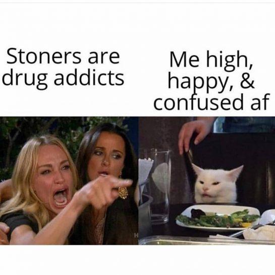 Tag a stoner #memes #dank #dankmeme #420 #stonermeme #420meme #weedmeme #funny #funnymeme