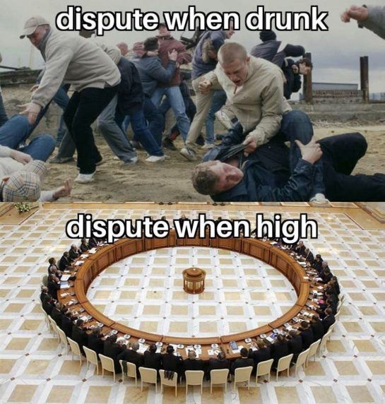 Which one are you? #drunk or #high? #stonermemes #stoners #weed #nzweed #weednz #weedmeme #meme…