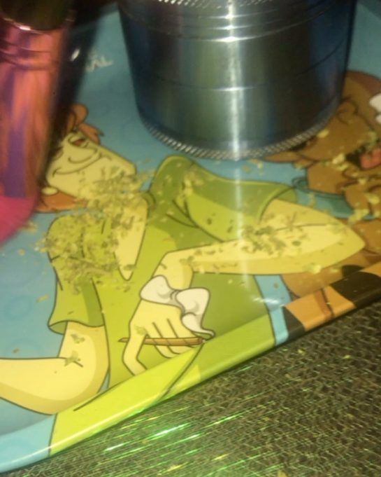 I use an old makeup brush to tidy up my rolling tray #weed #weedwitch…