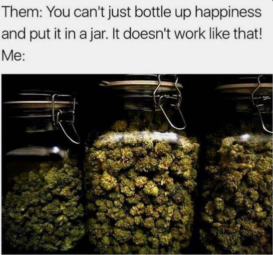 @weedboy____420 Memes 24/7 Hit And Follow‼️ #weedmeme #hellahigh #smokeweed #stonerlife #weedhumor #potheads #dankweed #kushqueens…