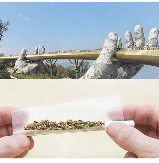 @ @ – – – – #420life #420humor #420memes #weedmemes #weedmeme #weedmemesdaily #weedfeed #stonerhumor…