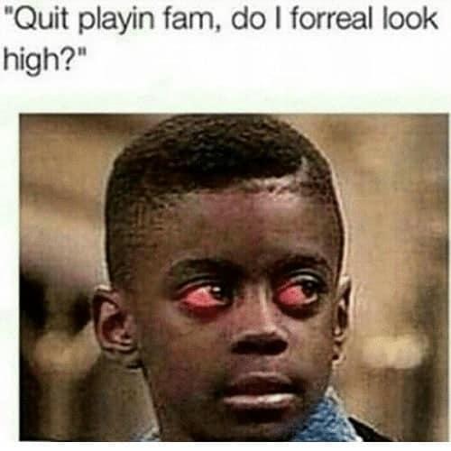 Nah bro you cool #weedmeme #weedstagram420 #weedhumor #weedporn #weedmemes #dank #dankmemes #funnymemes #memesdaily #meme…