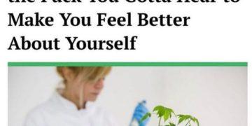 Weed cured my lack of weed #stonermemes #stoners #weed #nzweed #weednz #weedmeme #meme #highaf…