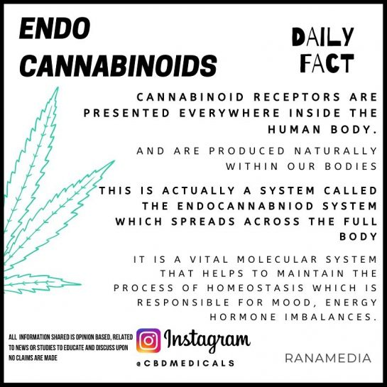 Cannabinoid receptors are places throughout the body 🤯 it's amazing to know that our…