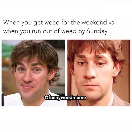 @social_cannabis_ Well, now? Who else is in this situation? #weedmeme #weedmemes #420 #stoner #stoned…