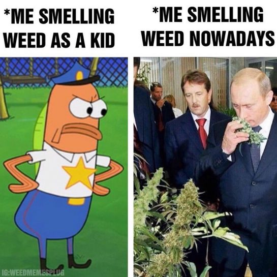 TAG someone who loves smell of weed as much as Putin! 🥰 – Make…