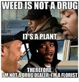 I'm no drug dealer I'm a florist • #weed #weedmemes #weedmeme #howhigh #methodman #redman…