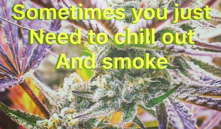 Sometimes you just need to chill out and enjoy your life! #weedporn #weedmeme #weedporndaily420…