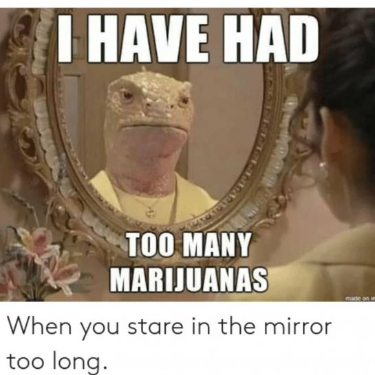 Can I get one weed please? Follow @asm_weed for loads of weed memes and…