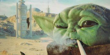 Baby Yoda ist einer von uns 🤣️ Folgt @stoner_seite 🦥