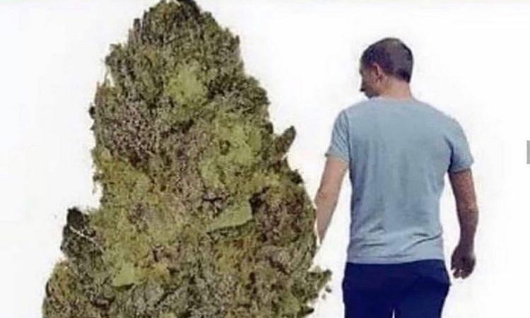 Anyone feel this? . . . . . #weed #weedmemes #weedmeme #marijauna #marijuanameme #funnymemes