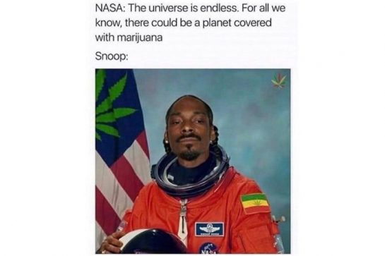 #snoopdogg #space #Cyberpunk2077 #cannabisculture #cannabis #organicgarden #permaculture #cannabiscommunity #weedmeme #weedlife #growyourown ⠀ ⠀ Snoop…
