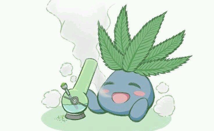 #weedmeme #weedporn #meme #pokemon #chibi #cute