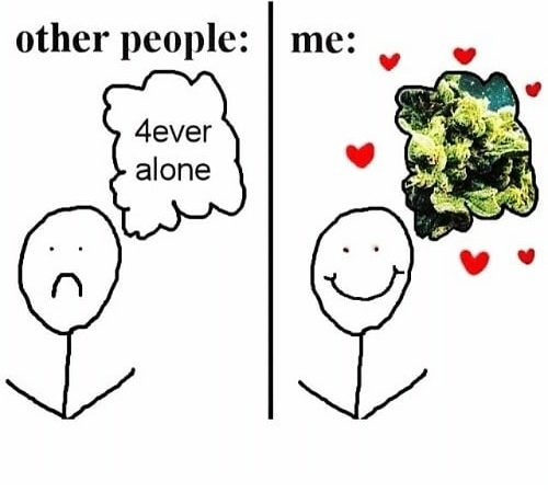 Pretty much me lol🥦 #weed #weedmeme #haze #kush #weedgirl #pot #godsplant #ganja #green #ganjagirl…