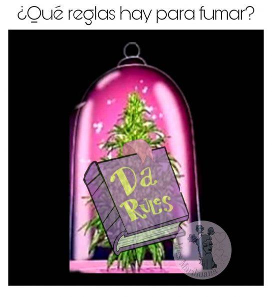 Ley del 🧝️ . . . . #missmarihuana #weedgirls420 #weedgirls #humo #smoke #marihuana #verde…