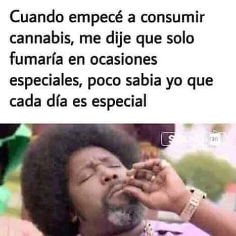 Todos los días son especiales. #weedporn #cannabiscommunity #cannabis #420Mx #weed #autocultivoya #enrollayrola #autocultivolegal #420weedstagram…