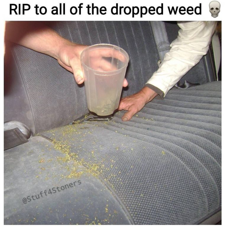For real, cushions real sticky fingered #weed #weedmeme #weedporn #cannabis #cannabiscommunity #marijuana #stoners #stonermemes…