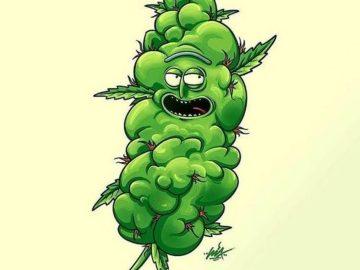 Bud Rick . . #cannabis #marijuana #weed #weedmeme #420meme