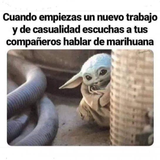 Holis . #lapalida #weedmeme #weedstagram420 #memes #snoop #dog #420 #420life #cannabiscommunity #nomaspresosporplantar #cannabisphotography #uruguay…