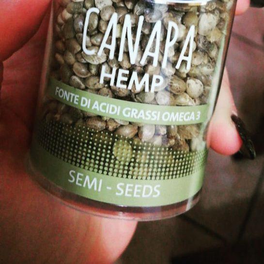 Hemp seeds! #weed #stoned #ganja #weedgirls #cannabis #stayhigh #weedlover #marijuana #high #ganjagirls #ganjalovers #weedmeme…