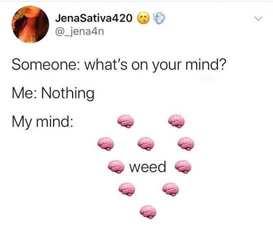 #memes #funnymemes #blackmemes #hoodmemes #memesoriginales #memesdaily #memeoftheday #laughing #funny #meme #weed #weedmeme #smoke #herb…