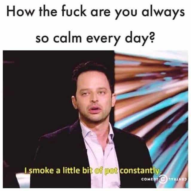 Just a little!? #weed #meme #weedmeme #pot #marijuana #420 #smokeweedeveryday #instaweed
