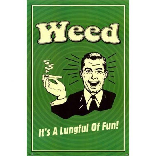 Times 2 lungs = double fun! . . #cannabis #marijuana #weed #weedmeme #420meme