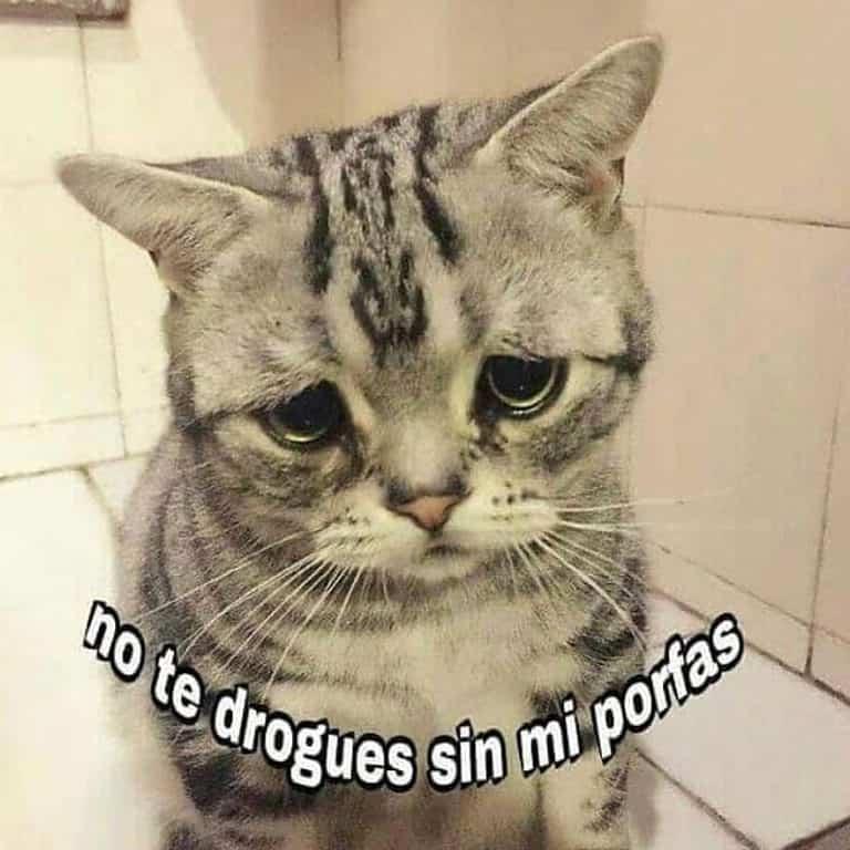 Porfaaa . #lapalida #weedmeme #weedstagram420 #memes #snoop #dog #420 #420life #cannabiscommunity #nomaspresosporplantar #cannabisphotography #uruguay…
