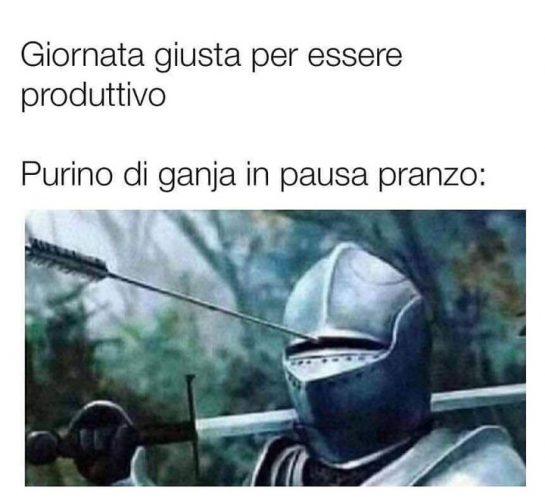 ️ Stonks ️ #meme #memeweed #novara #novaracentro #novaracity #vigevano #vercelli #vercellicity #faranovarese #cameri #arona…