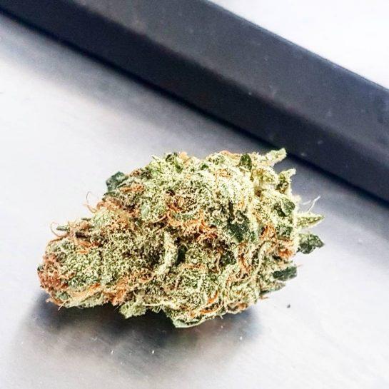 Say Cheese #weed #weedporn #weeds #weedmemes #weed #weedlife #weedman #weedgirls #weedhumor #weed #weedsociety #weedstar…