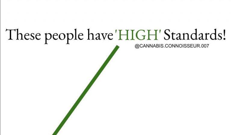 High Standards for daze! – – – – – #cannabisconnoisseur #cannabiscommunity #cannasseur #cannaseur #cannabissommelier…