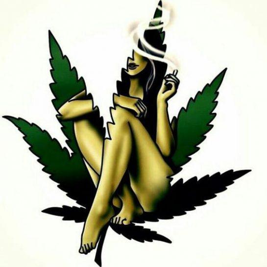 Nice! . . #cannabis #marijuana #weed #weedmeme #420meme