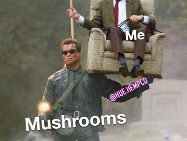 Literally just hang on for and enjoy the ride • • • • #weedmemes…