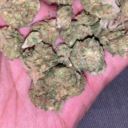 Good OG • • • • #weed420memes #weedculture #weedporn #weedmemes #weedmeme #stonerchick #weedhumor #weedfunny…