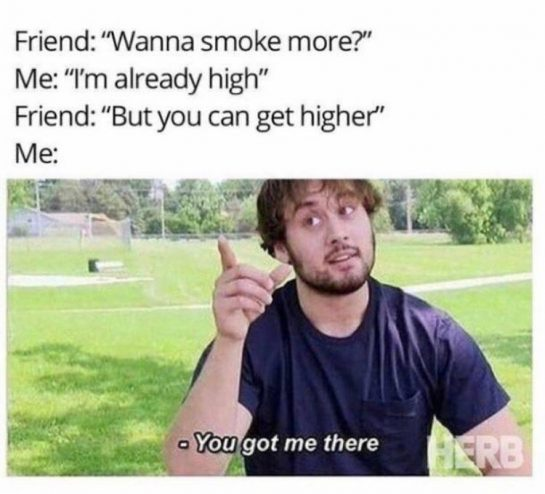 you can't say no to that🤷‍️ – – Follow @weedroto