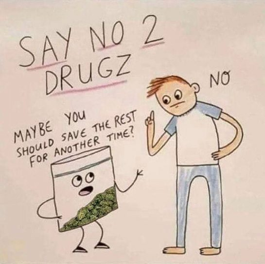 Say no to drugs. Say yes to weed. #eastcoastweed #eastcoast #thc #cannabis #cannabiscommunity #weedstagram420…