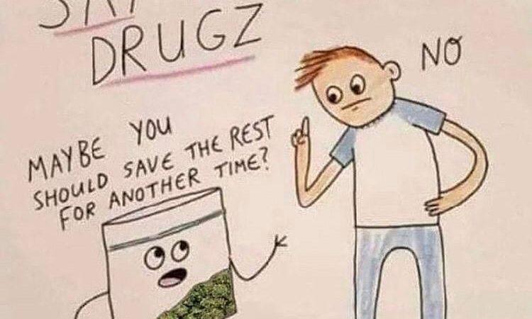 Say no to drugs. Say yes to weed. #eastcoastweed #eastcoast #thc #cannabis #cannabiscommunity #weedstagram420…