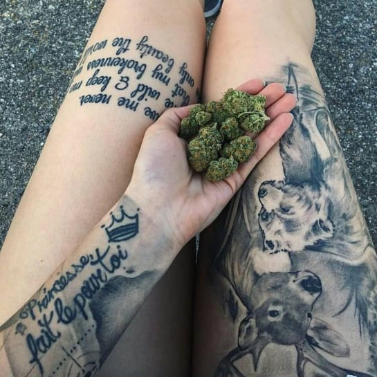 For More Weed Photos&Videos Follow Us ️ @ ⬅️ Credits : ?? – -…