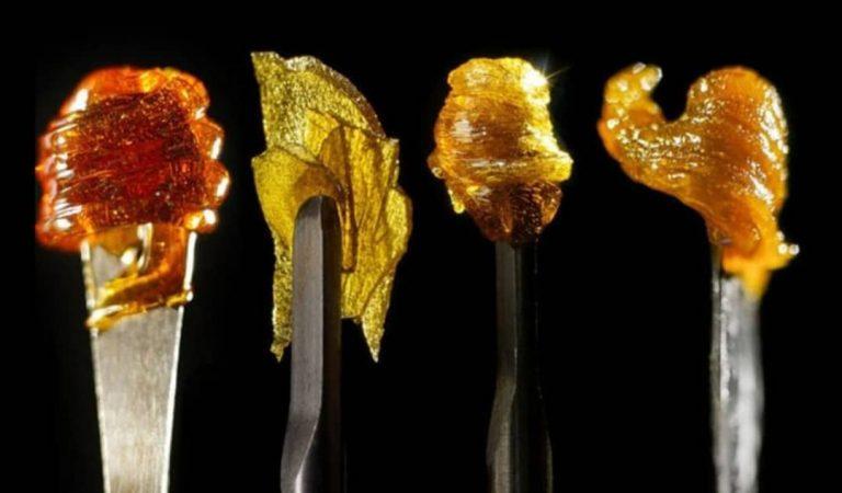 El Rosin es el nuevo concentrado de cannabis que se está convirtiendo rápidamente en…