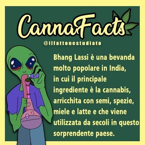 CANNAFACTS #2 ⠀ Like se sei un/a fattone/a studiato/a come noi!⠀ ⠀ 🧠Usa il…