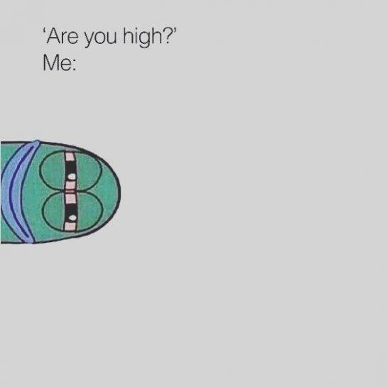 Are you?? 🤔 ‼️‼️ Follow. Tag. Share ‼️‼️ • • #stonrmemes #weed #weedmeme #420…
