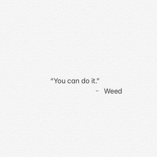・ Probably. ・ ・ ・ ・ ・ #cannabis #flower #pot #medibles #edibles #sativa #hybrid…